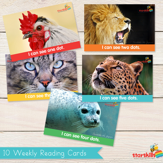 Starskills-Products-Reading-Cards