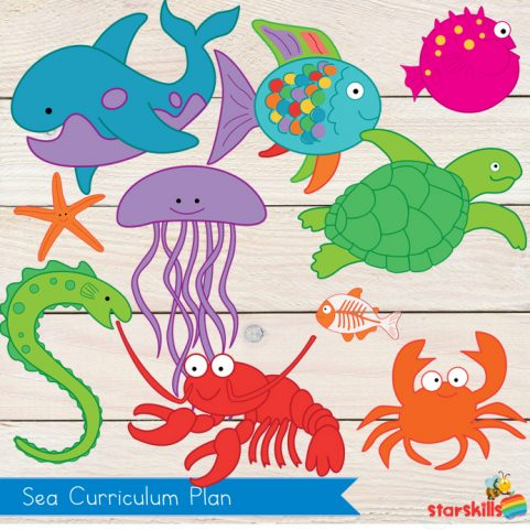 Sea Pack